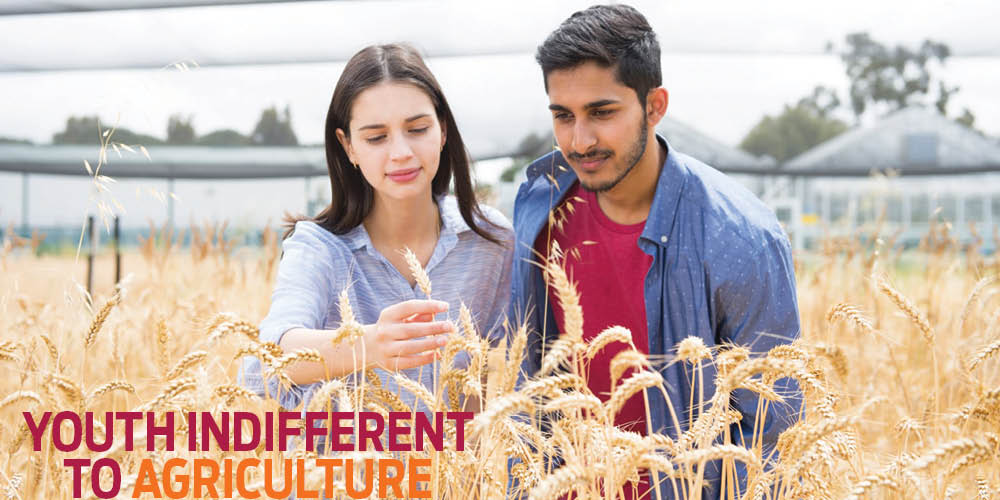 Youth Indifferent to Agriculture