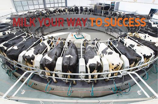 Milk your way to success