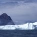 Darrel-iceberg