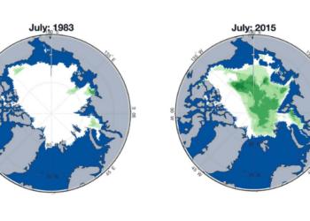 Artic turning green