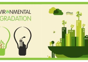 How education can help in catering to criticality like environmental degradation