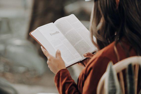 Reading HEP